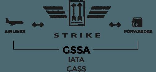 STRIKE AVIATION | YOUR UNIQUE GSSA